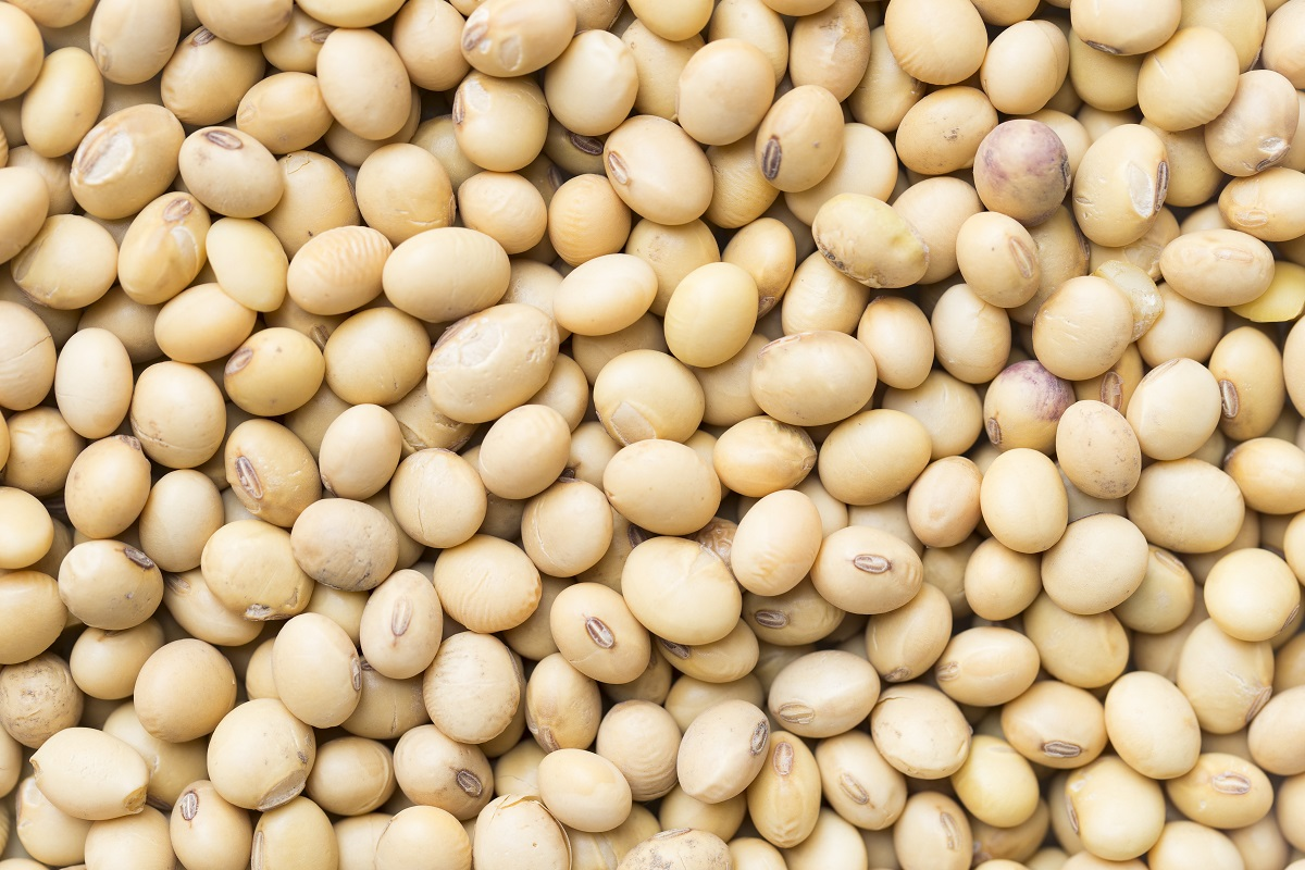 soybean and monsanto The suit brought by monsanto — the company responsible for the dicamba-tolerant xtend technology in soybean and cotton seed — argued against.