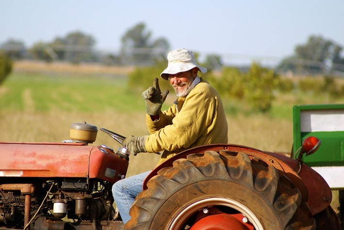 Family farms at risk