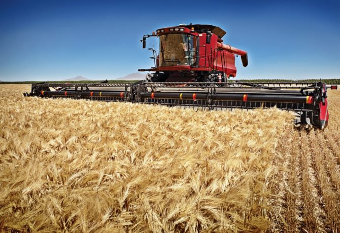 Graincorp quadruples profit